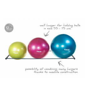 Ball hanger