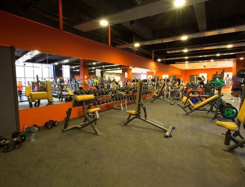 Galerie echipamente fitness 2012 - 6