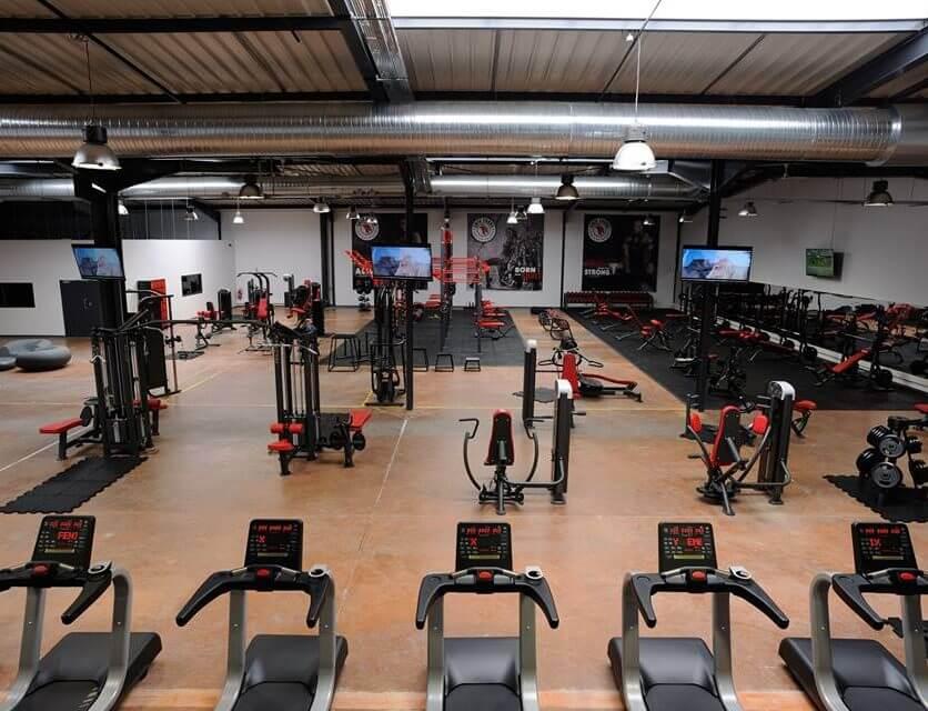Galerie echipamente fitness 2011 - 7