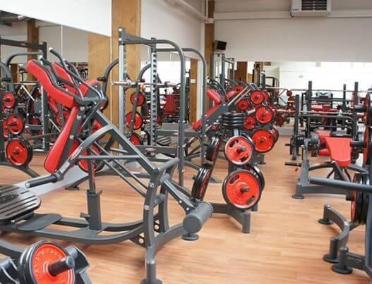 Galerie echipamente fitness 2011 - 10