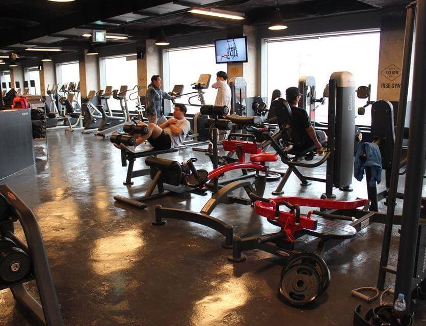 Galerie echipamente fitness 2009 - 8